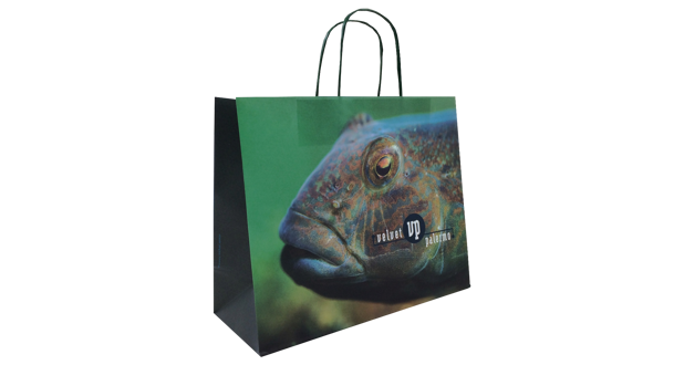Twisted Handle Paper Carrier Bag