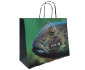 Twisted Handle Paper Carrier Bags