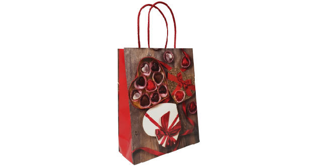 Luxury Twisted Handle Paper Bags1